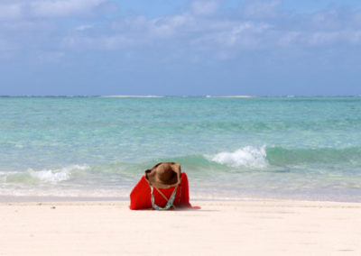 Ilot de sable blanc lune de miel en catamran à Mayotte